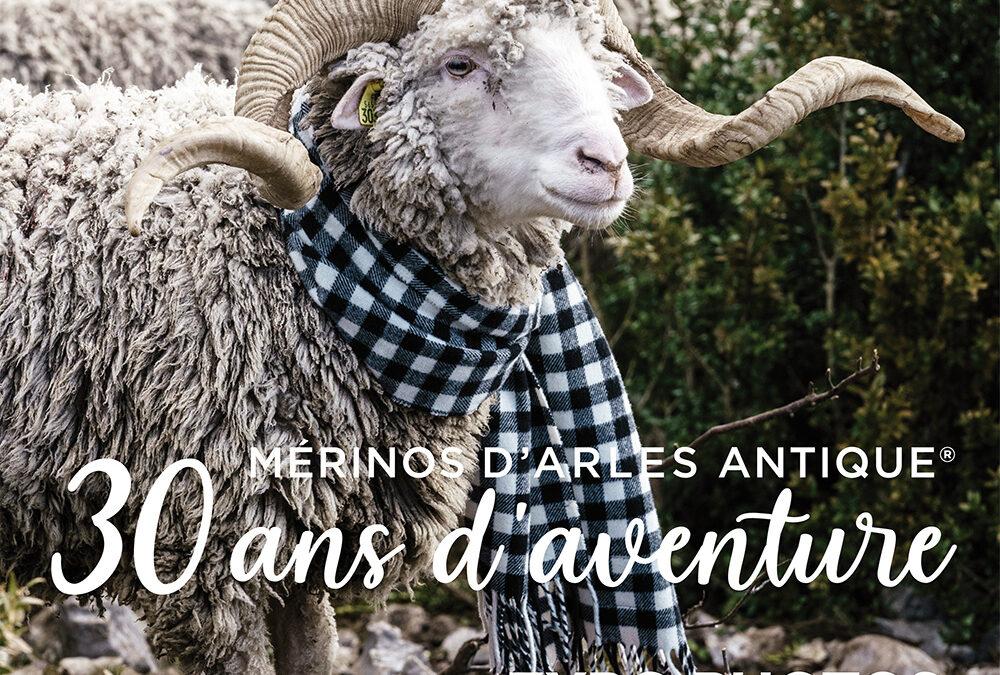 Exposition Mérinos d'Arles Antique